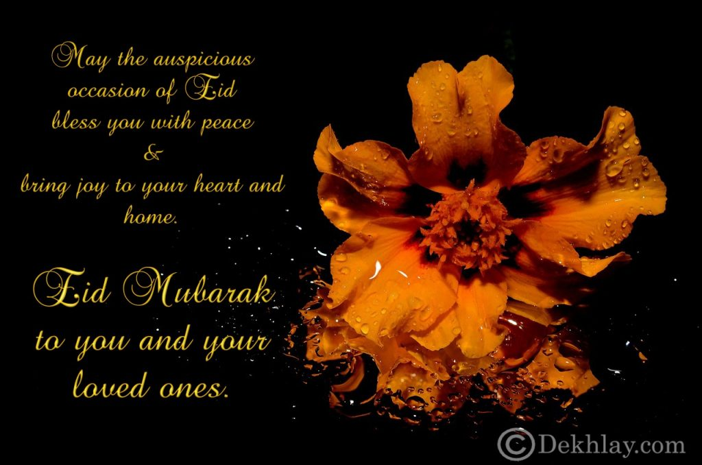 Beautiful Happy Eid ul Fitr Mubarak Wallpaper Display Picture (12)