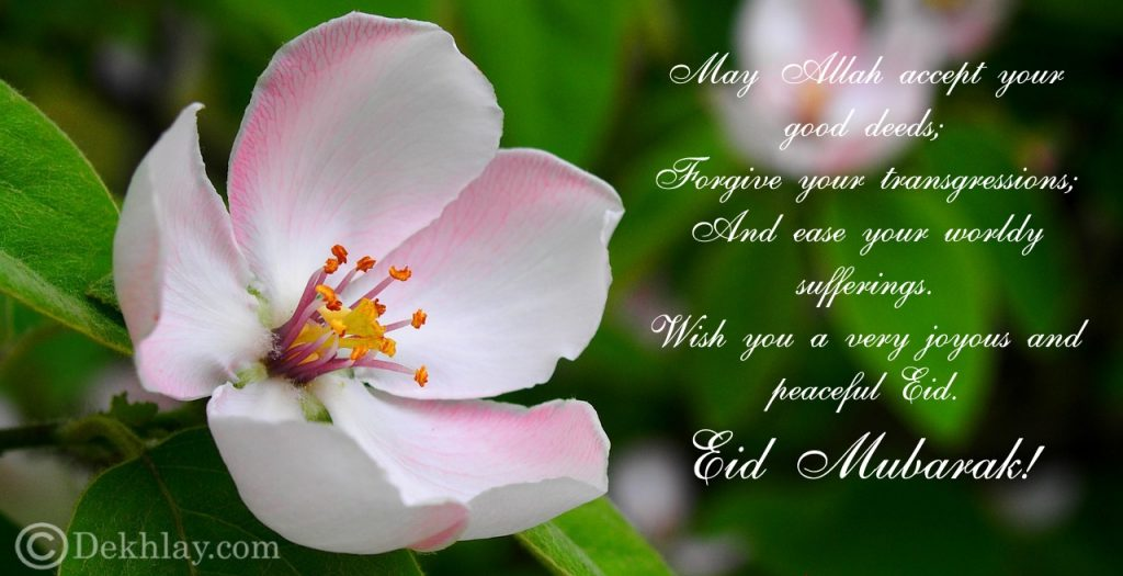 Beautiful Happy Eid ul Fitr Mubarak Wallpaper Display Picture (25)