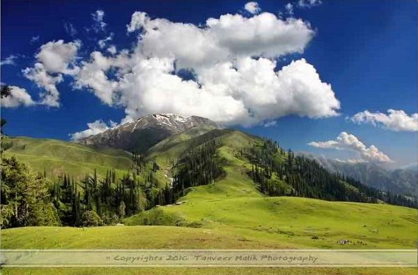 Paye, above Shogran (Pakistan)