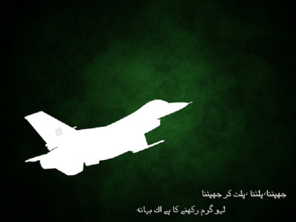 Pakistan Air Force Independence Day Display picture- avatar- wallpapers- 14th august