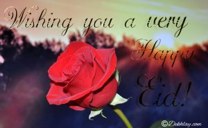 Red Rose Happy Eid Mubarak Picture Wallpaper