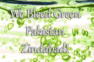 We Bleed Green Pakistan Zindabad HD Wallpapers