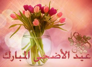 Beautiful Tulips Eid Mubarak Eid ul Azha Picture