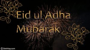 Eid Mubarak Beautiful Fireworks Eid ul Azha Picture